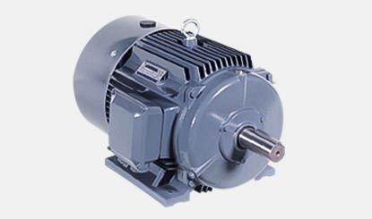 motor of peanut oil press