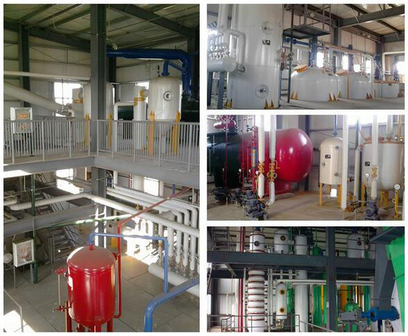 small edible oil extraction equipment