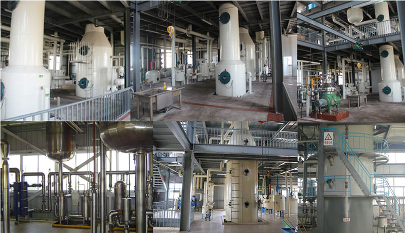cooking oil deodorization machines