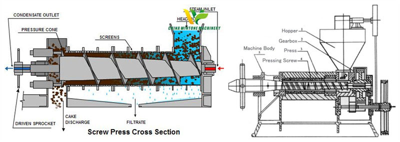 how does screw oil expeller work and its structure