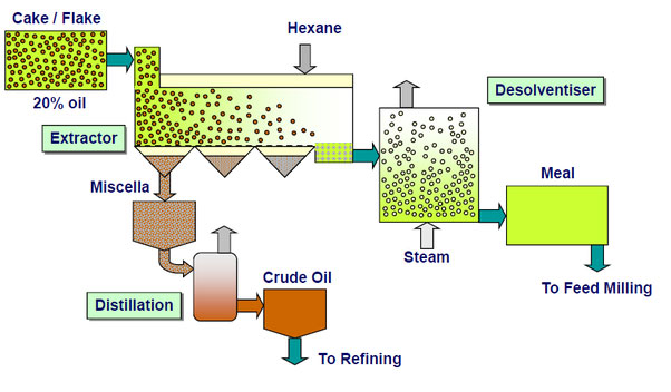 how edible oil be extracted from solvent oil extraction equipment