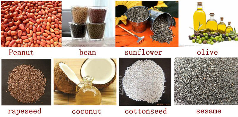oil-bearing materials for oil extraction by screw oil extractor