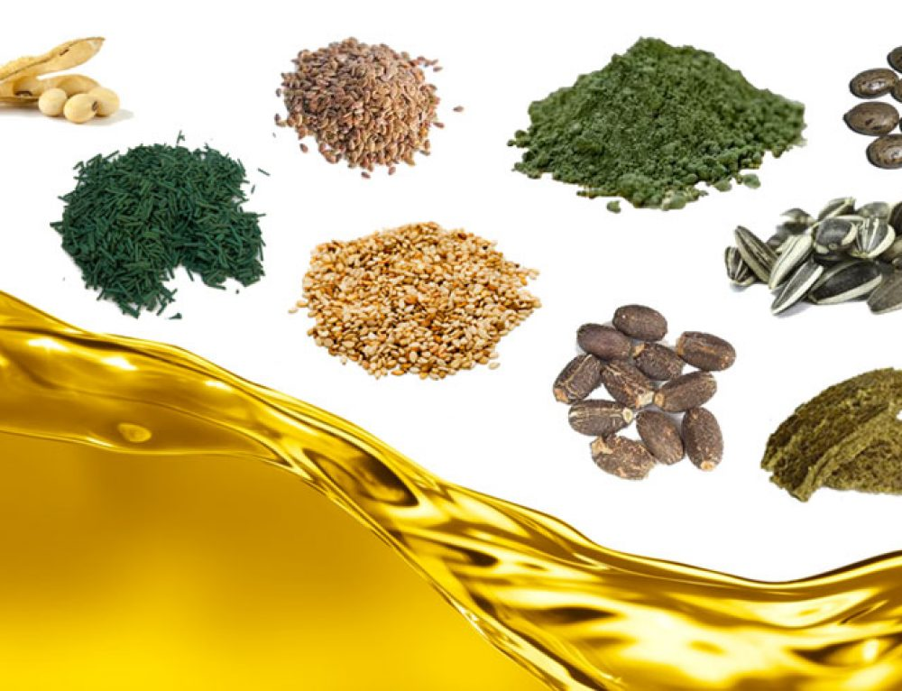Professional Pretreatment of Oilseeds