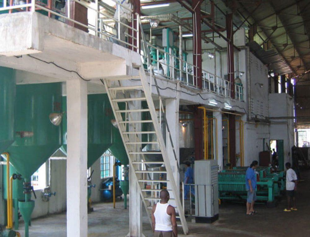 Ligne de production d'huile de palmiste