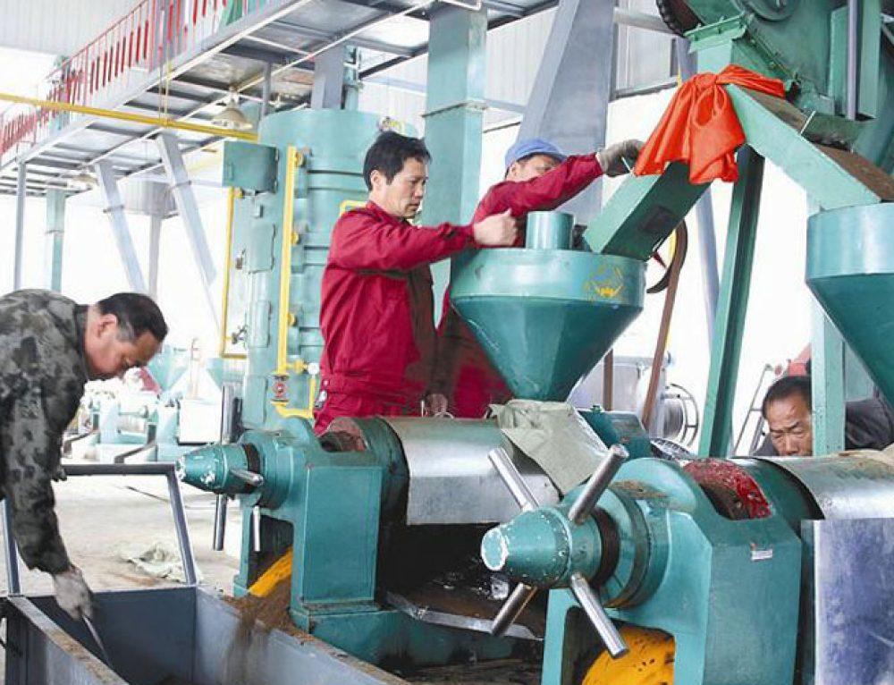 Ligne de production d'huile d'arachide