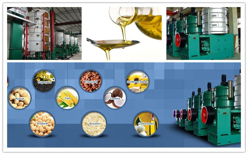 peanut oil pressing equipment in peanut oil production line