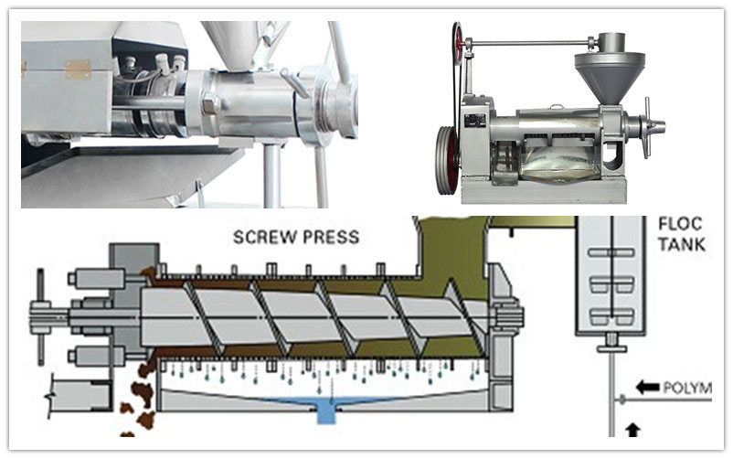 pressing screw of screw oil expeller