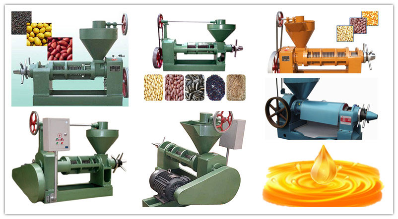 screw oil press machines for oil mill plant