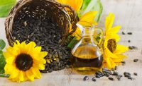 sunflower oil produced by cold pressing