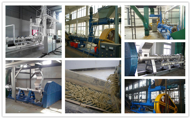 oilseed puffing machine for sale