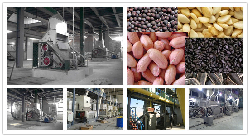oilseeds crushing machine in oil prodcution mill
