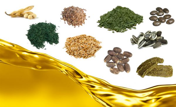 oilseeds pretreatment before extracting cooking oil