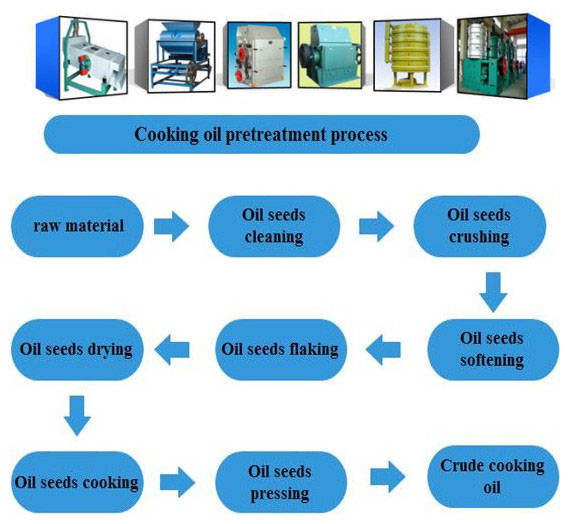 oilseeds pretreatment procedure and main preprocessing machines