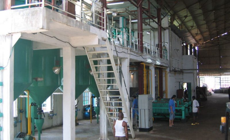 palm kernel oil extracting line