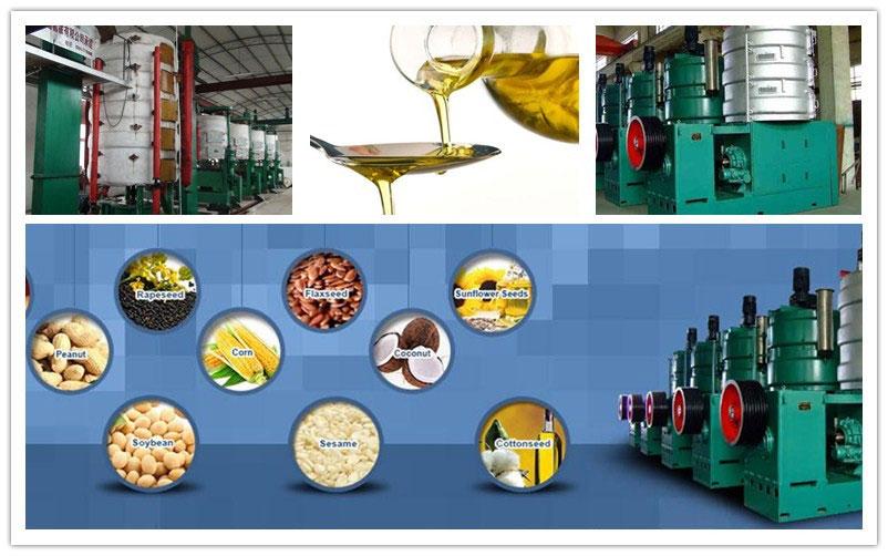 peanut oil pressing equipment in peanut oil production line