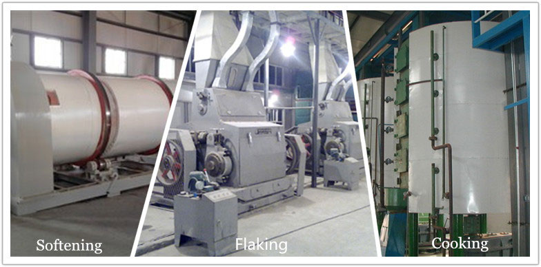 peanut softening, flaking, cooking equipment for preprocessing of peanut oil production line