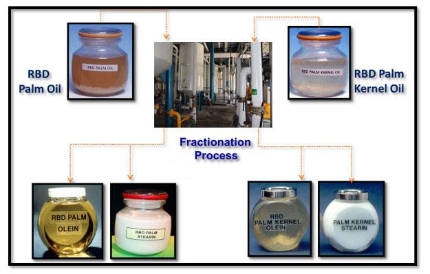 plam oil fractionation process