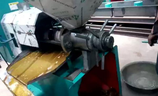 pressing screw of screw oil press